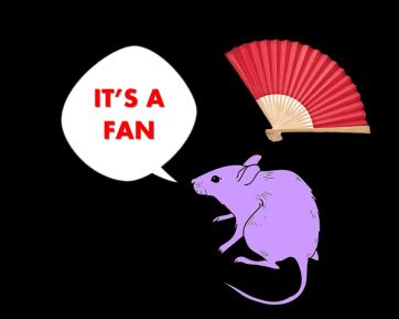 ratones 3