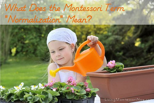 what-does-the-montessori-term-normalization-mean1